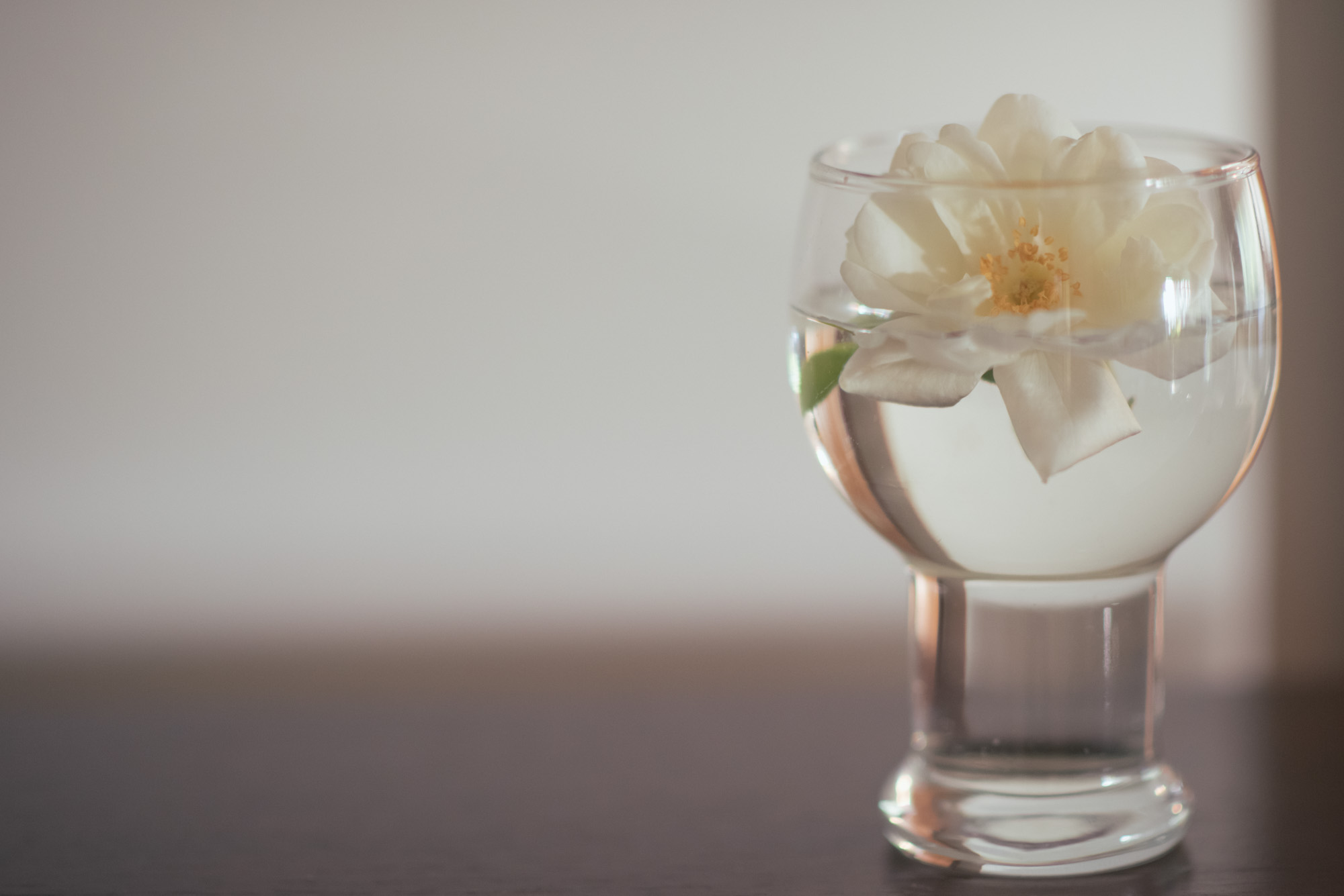 A flower in a glass for a traditional Sri Lankan wedding blessing.