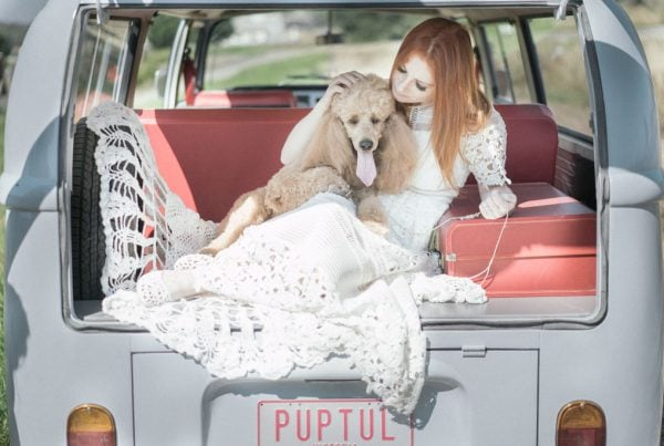 Melbourne Wedding Photography Dog Vintage Car Poodle