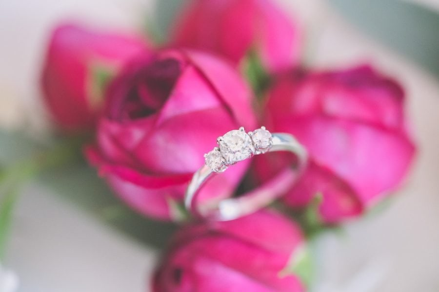 Gorgeous ring sits on a rose